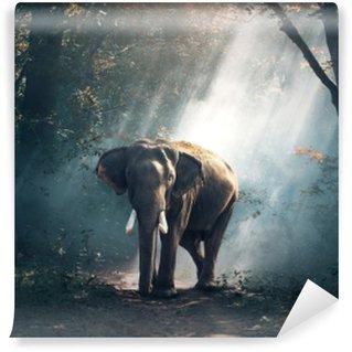 Elephant Vinyl Wall Mural