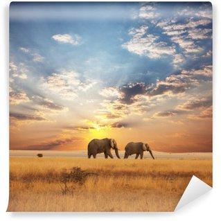 Elephant Wall Mural - Vinyl