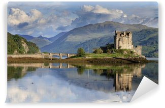 Castle Wall Mural castles and palaces wall murals - vinyl • pixers® • we live to change