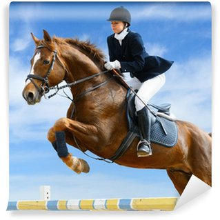 Equestrian jumper - Young girl jumping with sorrel horse Vinyl Wall Mural