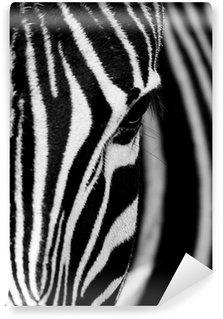Face of the Zebra