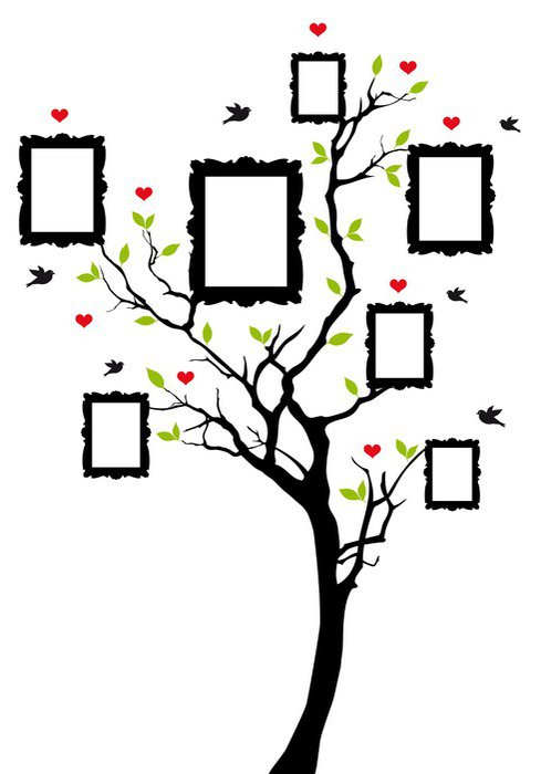 Wall Mural   Vinyl Family Tree With Frames, Vector