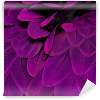 Feathers; Purple Wall Mural - Vinyl