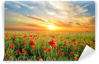 field with poppies Wall Mural - Vinyl