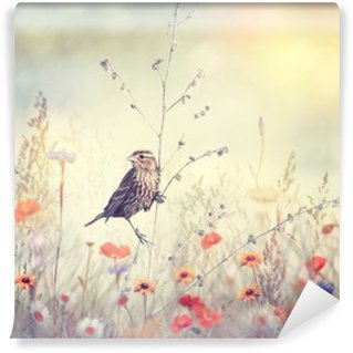 Wall Mural - Vinyl Field with wild flowers and a bird