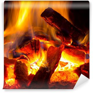Vinyl Wall Mural flame of fire