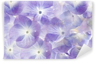 Floral background.Soft purple hydrangea.