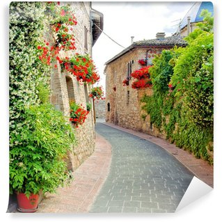 Flower lined street in the town of Assisi, Italy Wall Mural - Vinyl