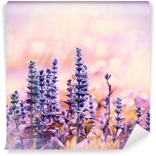 Flowering beautiful purple meadow flowers Wall Mural - Vinyl