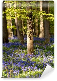flowering bluebells in spring forest Wall Mural - Vinyl