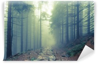 Fog in the haunted forest Wall Mural - Vinyl