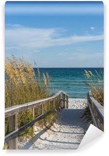 Wall Mural - Vinyl Footpath to beach in paradise