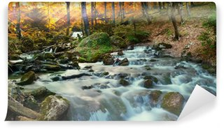 forest waterfall Wall Mural - Vinyl