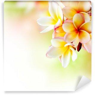 Wall Mural - Vinyl Frangipani Tropical Spa Flower. Plumeria. Border Design