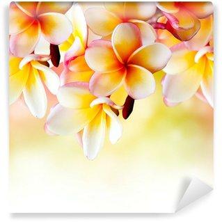 Wall Mural - Vinyl Frangipani Tropical Spa Flower. Plumeria Border Design