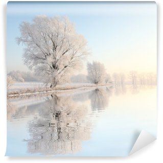 Frosty winter tree against a blue sky with reflection in water Wall Mural - Vinyl