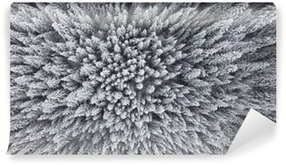 Frozen Pine Forest From the Air Wall Mural - Vinyl