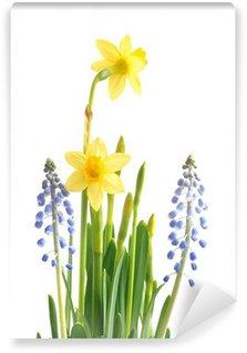 Frühling Blumen zu Ostern, Zwiebelgewächse Wall Mural - Vinyl