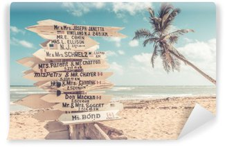Wall Mural - Vinyl Funny direction signpost