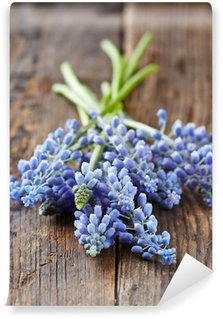 Grape Hyacinths on old wooden background Wall Mural - Vinyl