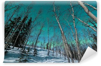 Wall Mural - Vinyl Green bands of Northern Lights over winter taiga