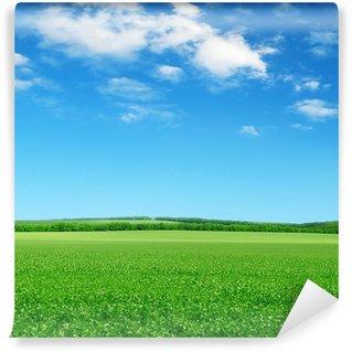 Wall Mural - Vinyl green field and blue sky