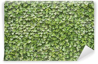 Green leaves plastic ivy background