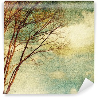 Grunge vintage nature background Wall Mural - Vinyl