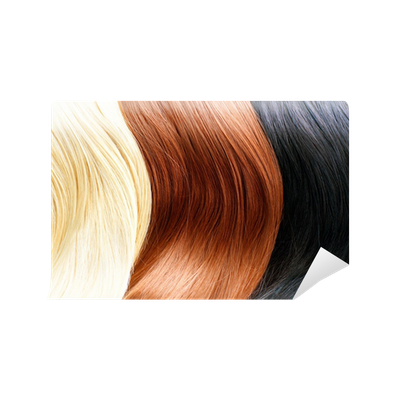 Hair Human Color Expression Purple Nose Anime Cartoon Hairstyle Black Mangaka Joint