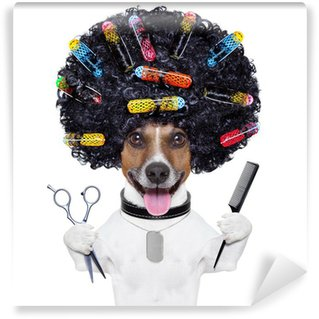 Wall Mural - Vinyl hairdresser dog with curlers