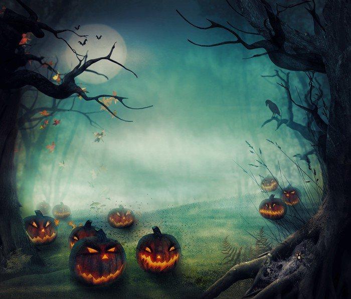 wall mural vinyl halloween design forest pumpkins cosmos - Halloween Wall Mural