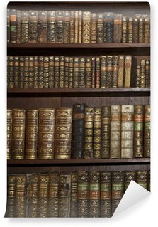 Wall Mural - Vinyl historic old books in old shelf library