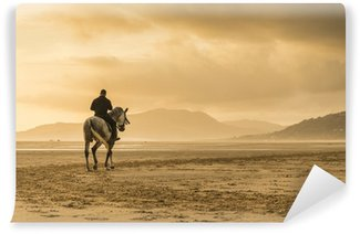 Horse riding on beach Vinyl Wall Mural
