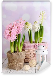 Hyacinth in pot on table on bright background Wall Mural - Vinyl