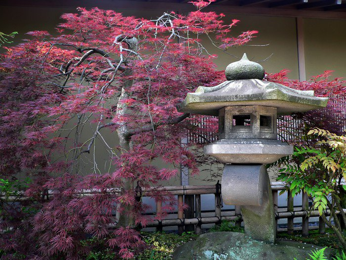 Japanese Garden Wall Mural   Vinyl   IStaging Part 59