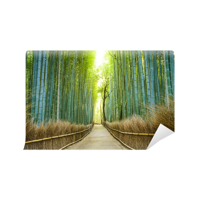 Kyoto japan bamboo forest wall mural pixers we live for Bamboo forest wall mural