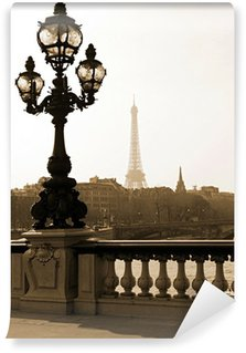 Wall Mural - Vinyl Lamppost on the bridge of Alexandre III in Paris, France