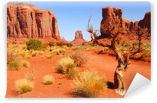Large rock formations in the Navajo park Monument Valley Wall Mural - Vinyl