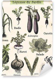 Wall Mural - Vinyl Légumes du jardin