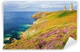 Lighthouse on Cap Frehel. Brittany, France Wall Mural - Vinyl
