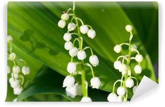 Lilies of the valley Wall Mural - Vinyl