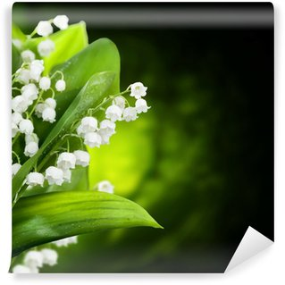 Lily-of-the-valley flowers design Wall Mural - Vinyl