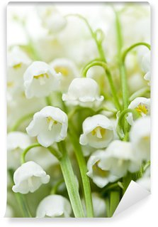 Lily-of-the-valley flowers Wall Mural - Vinyl