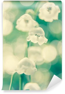 lily of the valley flowers Wall Mural - Vinyl
