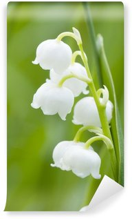 Lily of the valley Wall Mural - Vinyl