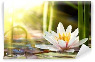 lotus flower Wall Mural - Vinyl