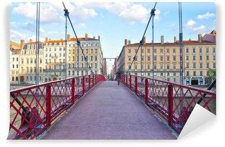 Lyon, puente peatonal, ingeniería urbana, Francia Wall Mural - Vinyl