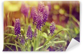 Magic divine spring violet flowers in the garden Wall Mural - Vinyl