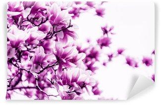 Magnolia flower blossom Wall Mural - Vinyl
