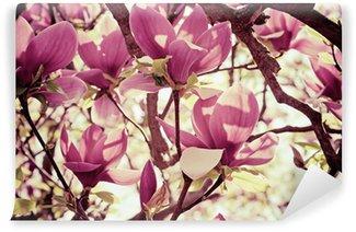 Magnolia flowers Wall Mural - Vinyl